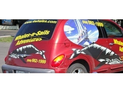 Whales N Sails Adventures PT Cruiser ~ New Brunswick, Canada